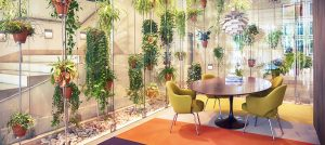 Biophilic Design: The Benefits Of Nature In Office Design