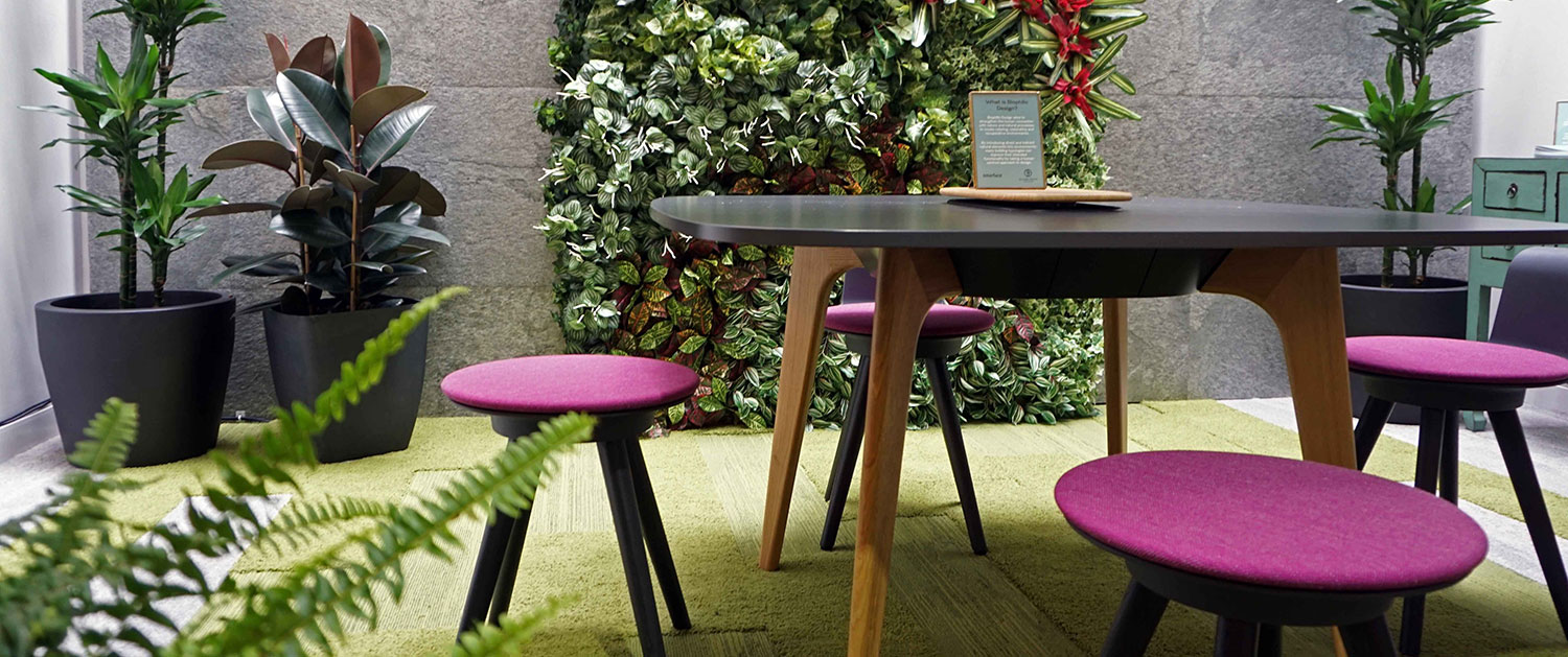 , Biophilic Design: The Benefits Of Nature In Office Design