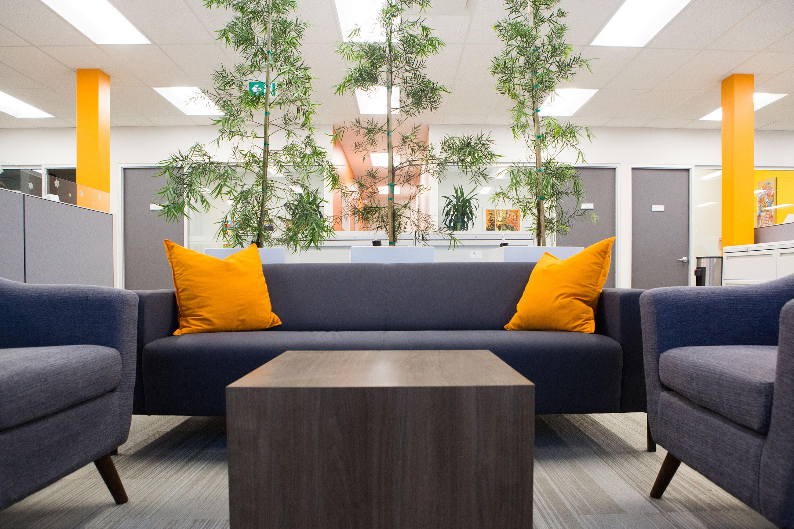 Office Interior Design Build Experts Truspace
